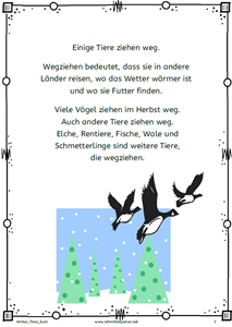 Winter Tiere bunt 2020 1