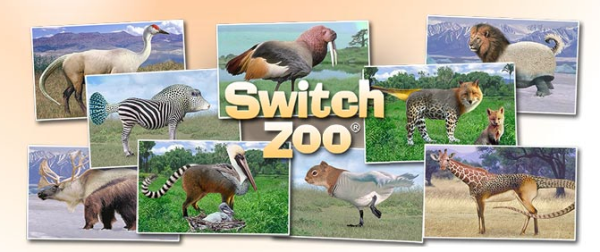 Switch Zoo 2020