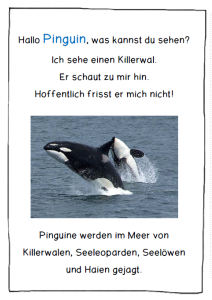 Pinguin Sinne 3