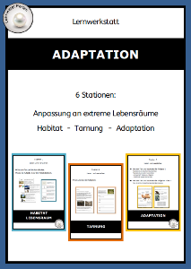 Adaptation T