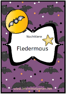 Fledermaus US 2020 T